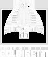 [:en]Coldiretti Logo[:]